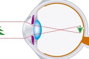 Wazifa Increase Eye Sight